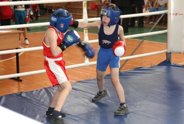 В Брянской области занялись детским боксом (1)