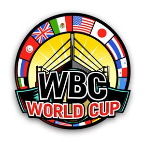 Кубок мира WBC может пройти в Москве (1)