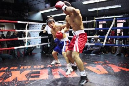 Итоги открытого чемпионата Y.A.NEXT по боксу и тайскому боксу     (5)