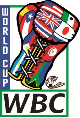 Абдусаламов, Шафиков, Казаев и Арсаев примут участие в Кубке WBC (1)