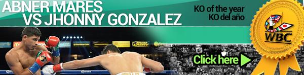 Всемирный боксерский Совет (WBC) назвал лучших из лучших в 2013 году! (4)