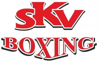 SKV BOXING стала лучшей промоутерской компанией 2013 года по версии UBO (1)