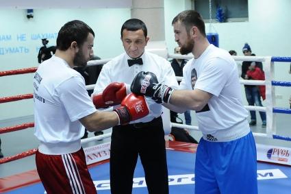 Бои по профессиональному боксу в Краснодаре (1)