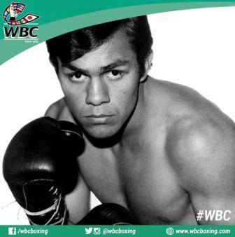 Бокс в этот день: 17 июля 1976 года (1)