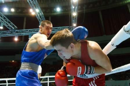 Международный турнир по боксу «Кубок губернатора» - 2014 (4)