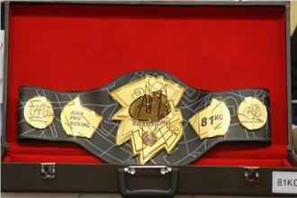 AIBA Pro Boxing запускает цикл отборочных боев (1)