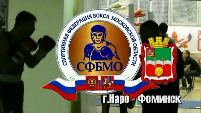 Завершился чемпионат Московской области по боксу (1)