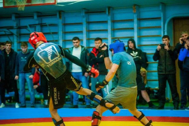 В Севастополе состоялся чемпионат по панкратиону (2)