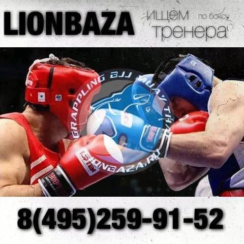 Lion baza ищет тренера по боксу в Москве (1)