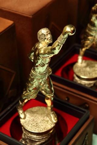 В Москве с успехом прошла III Национальная премия «ЗВЕЗДА БОКСА» (5)