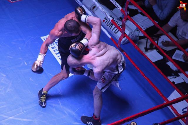 В Воронеже состоялись бои по боксу и кикбоксингу (1)