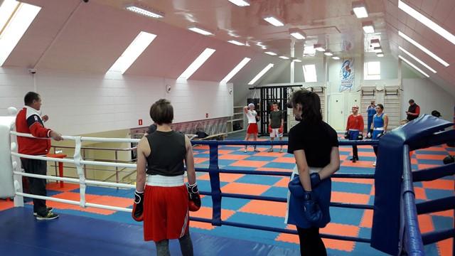 Бокс в Подмосковье