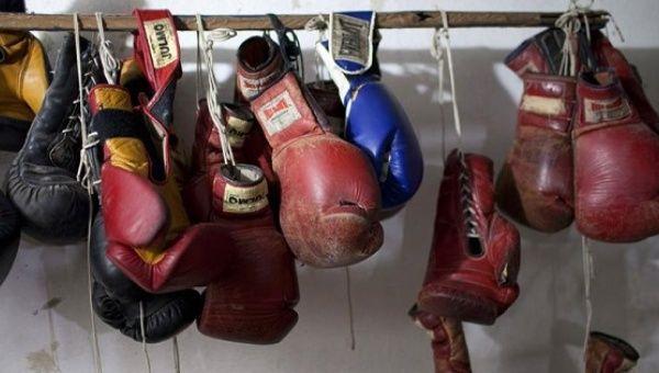 Полиция раскрыла картель, нелегально эксплуатирующий боксеров (1)