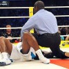 Новости бокса 21 января