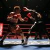 Бокс – это лучшее, что есть в жизни! (видео)